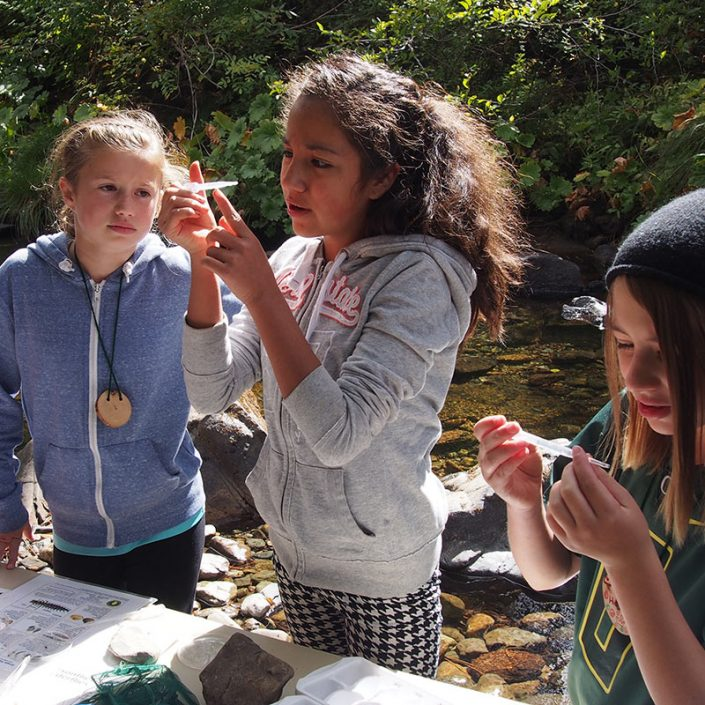 SOU Environmental Education Program Talent Elementary in the Field