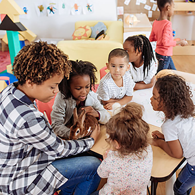 MSEd Early Childhood Education SOU